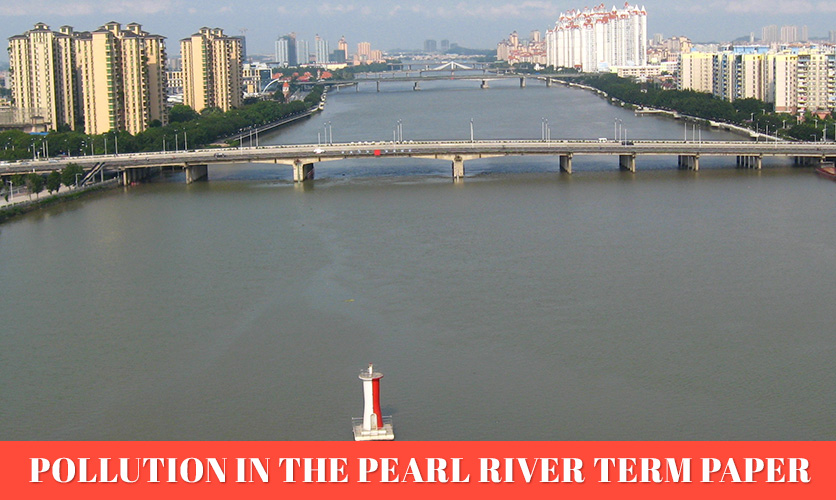 Pollution-in-the-Pearl-River-Term-Paper