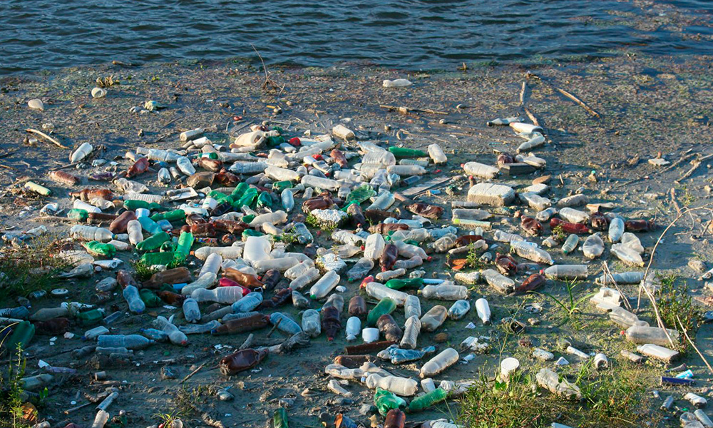 plastic-bottles-as-the-major-pollutants